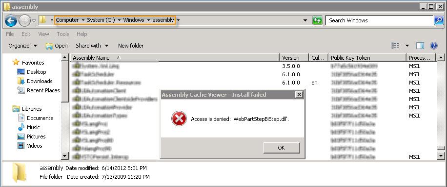Access is denied: 'xxx dll' – Manually add an assembly ( dll